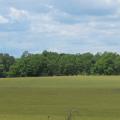 grass field at Monocacy National Battlefield