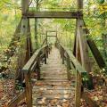 Laurel Loop Bridge at Prince William Forest Park