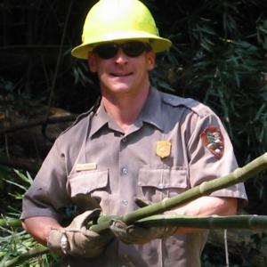 park ranger removing invasive plants